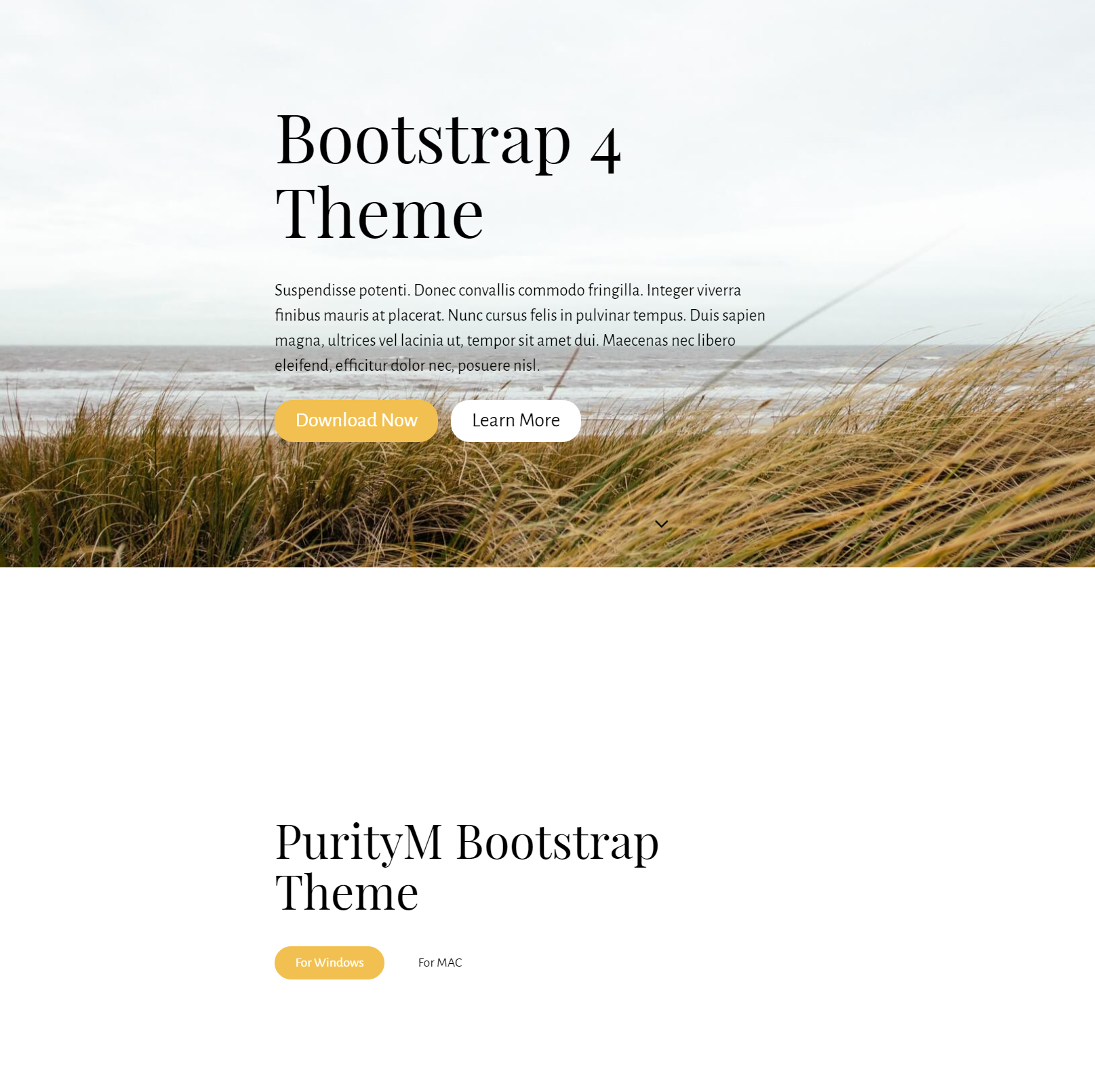 CSS3 Bootstrap 4 Templates