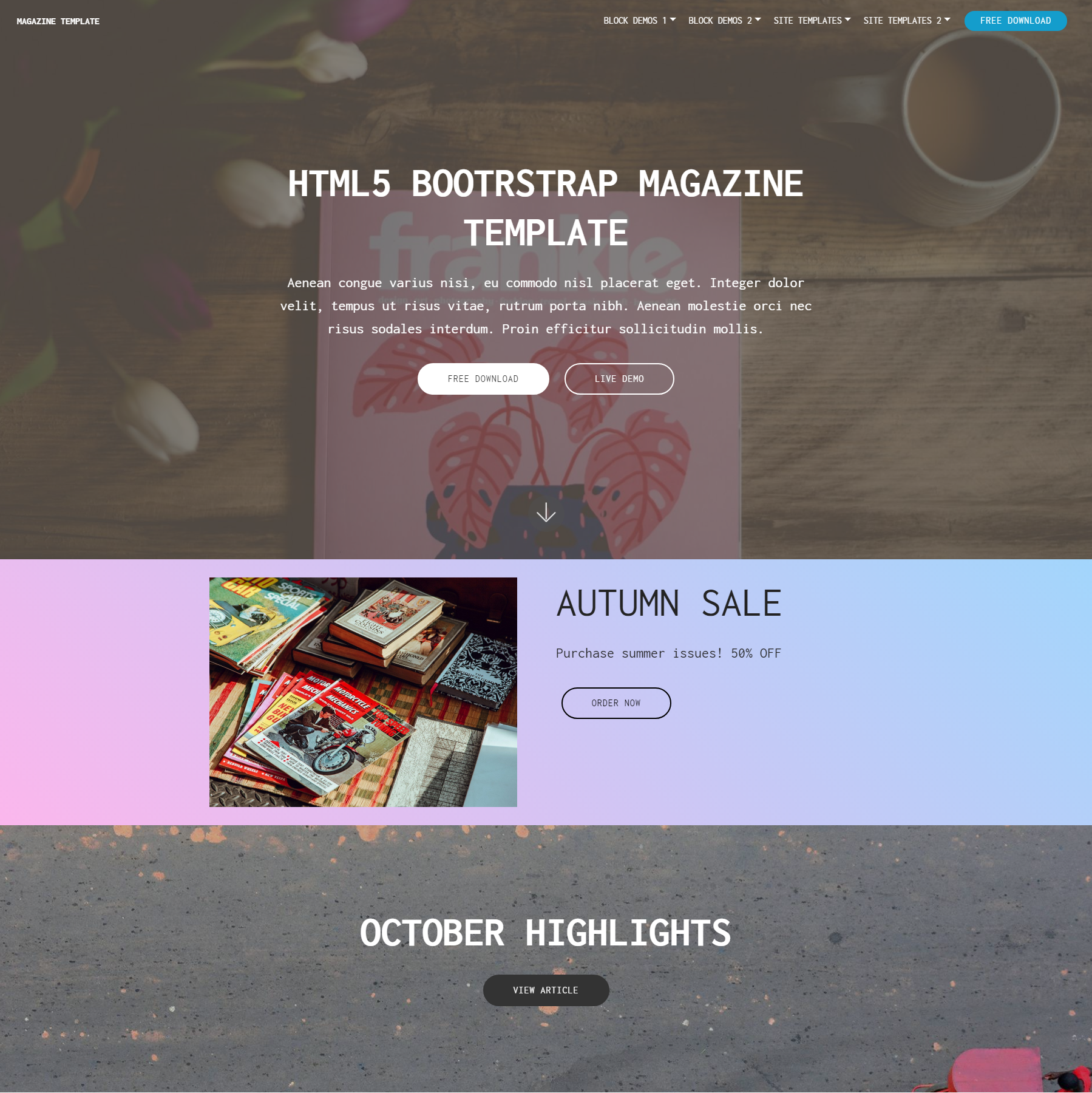 Responsive Bootstrap Magazine Templates
