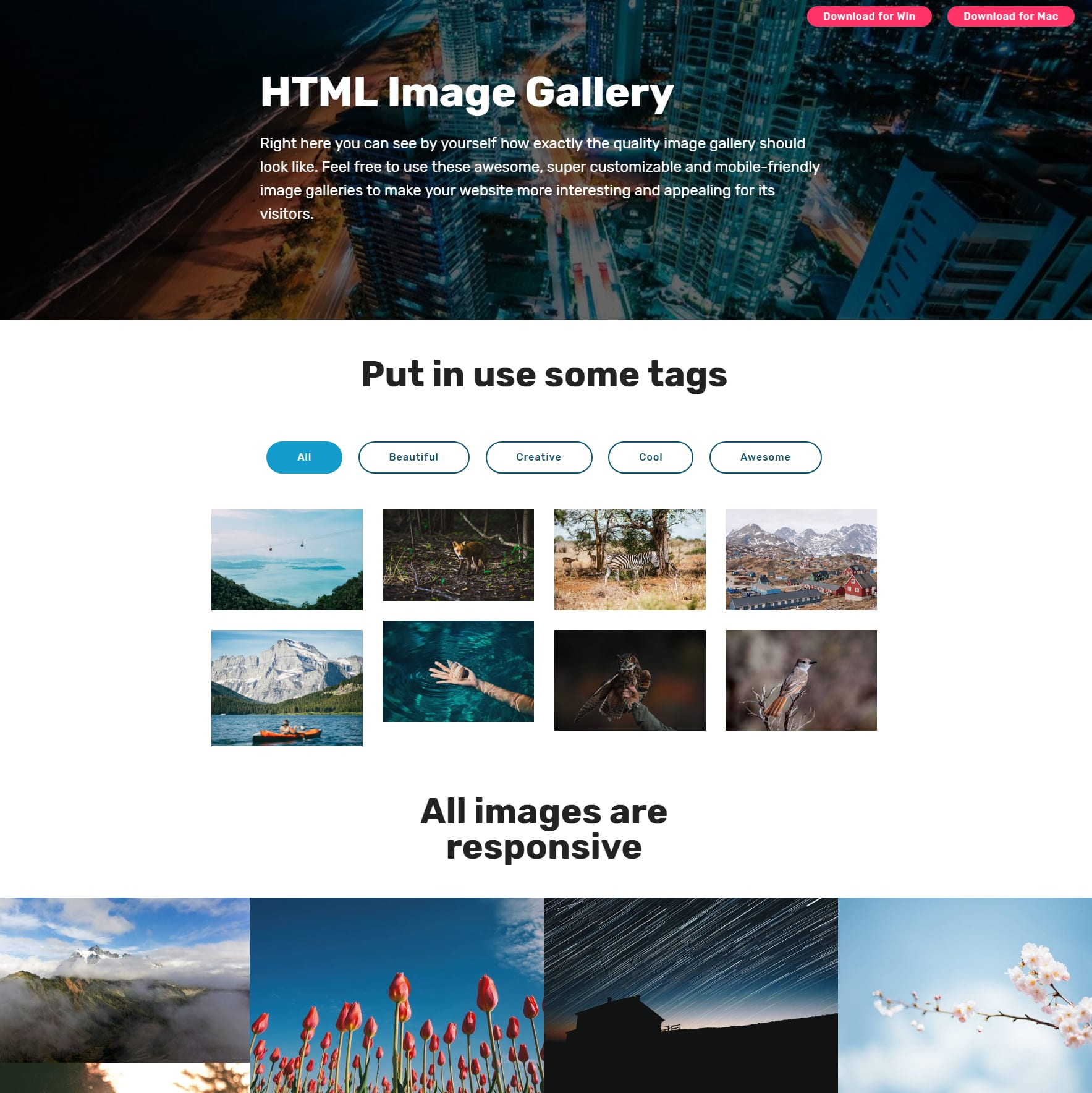 Free HTML Themes